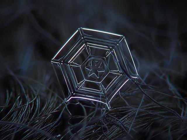 snowflakes-macro-photo10